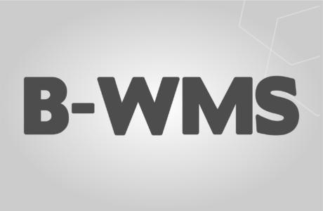 B-WMS ZION